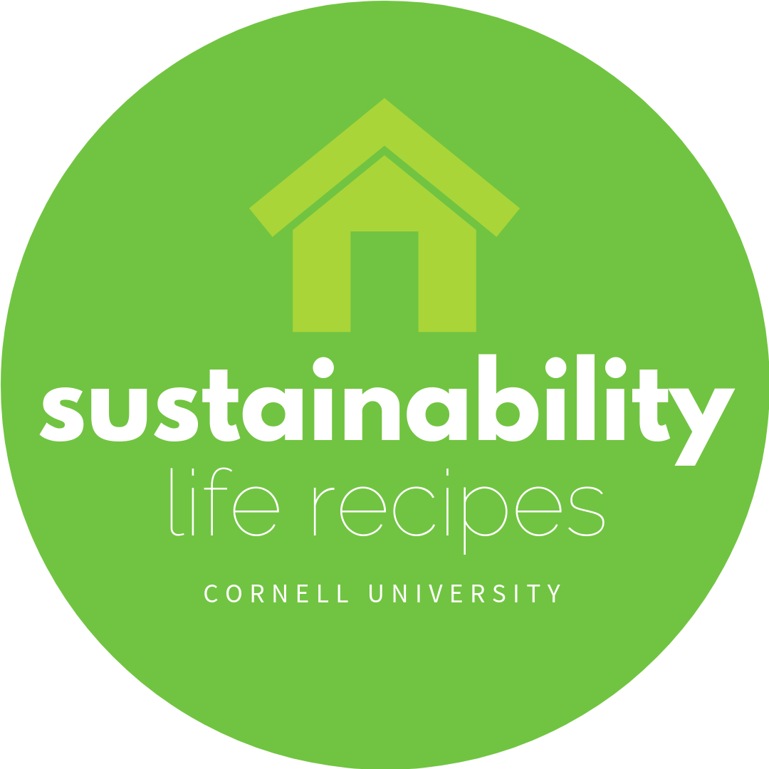 Sustainability Life Recipe Icon