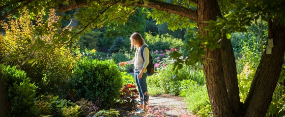 A student at Cornell Botanic Gardens in summer.