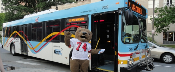Big Red Bear in front of TCAT bus
