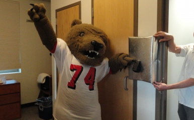 Touchdown the bear turns off a lightswitch