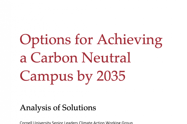 Report cover: Options for a Carbon Neutral Campus by 2035