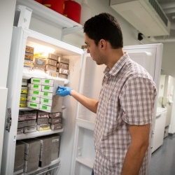 Researcher using lab freezer
