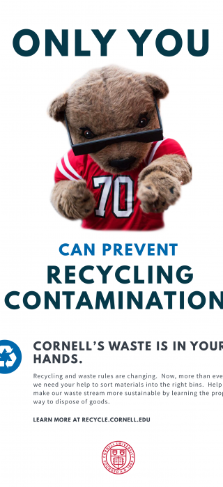Poster-Touchdown the bear pointing out with text: Only You Can Prevent Recycling Contamination