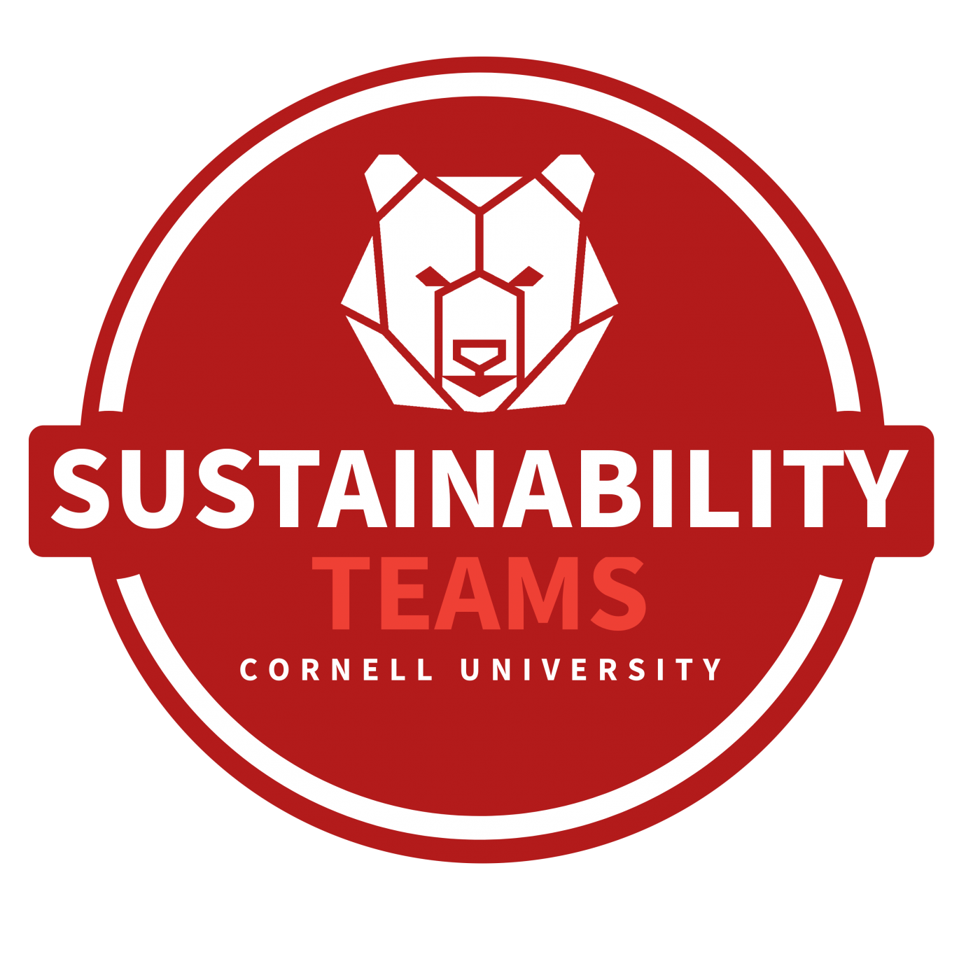 Sustainability Teams Logo, Cornell