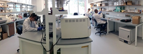 Researchers working at a lab bench in engineering assistant professor Ankur Singh's laboratory space in Kimball Hall.