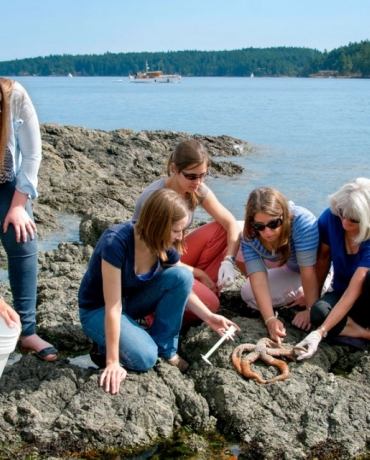 Drew Harvell, far right, professor of ecology and evolutionary biology and former Cornell Atkinson faculty director, examines starfish with students at Friday Harbor Labs on the coast of Washington state in 2014.