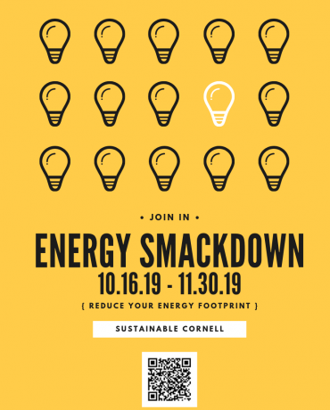 Energy Smackdown poster with light bulbs