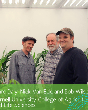 arc Daly, Nick Van Eck,  and Bob Wilson